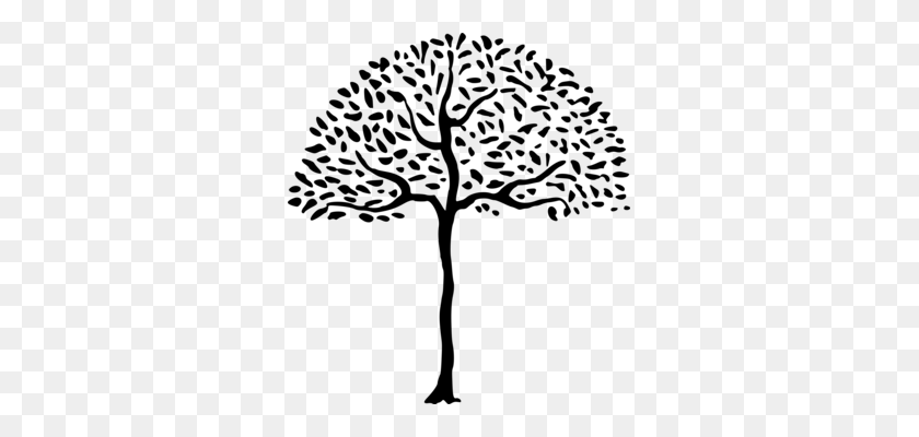 Download Neem Tree Leaves Clip Art Clipart Neem Tree Clip Art Tree