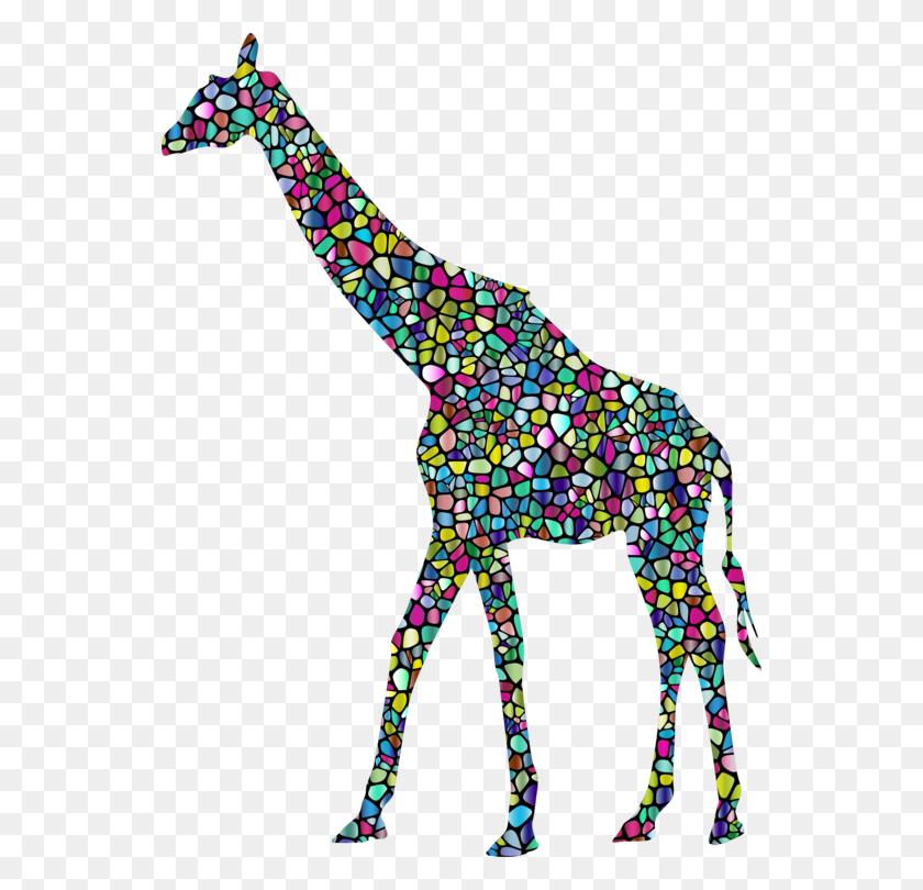 Baby Giraffes West African Giraffe Vertebrate Northern Giraffe - Giraffe Clip Art Free