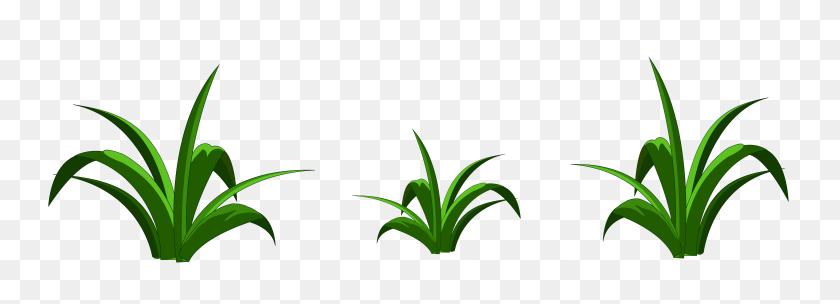 Backdrops Clip Art, Grass - Tall Grass Clipart