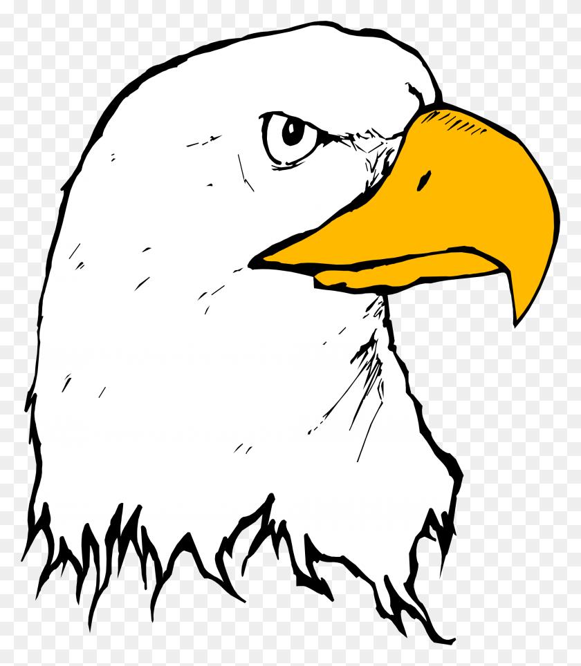 2040x2366 Bald Eagle Beak Clip Art - Free Eagle Clipart