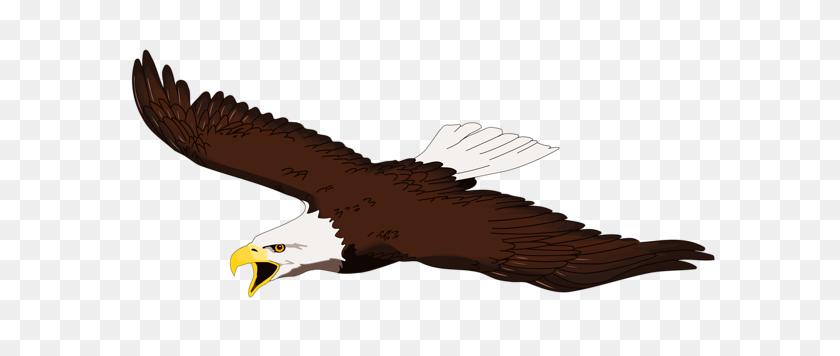 Bald Eagle Clip Art Clipart - Bald Clipart
