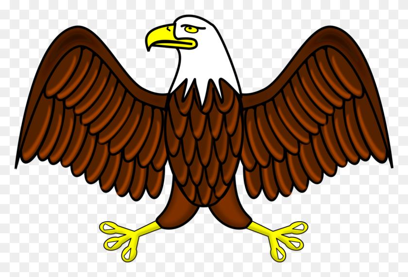 Bald Eagle White Tailed Eagle Philippine Eagle Download Free - Usa Eagle Clipart
