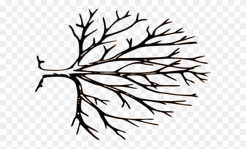 Bare Tree Clipart Black And White Bare Tree Clipart - Peach Clipart Black And White