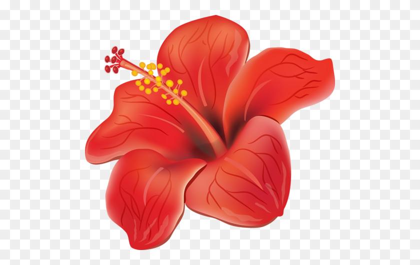Baskets Of Flowers Clip Art Summer - May Flowers Clip Art