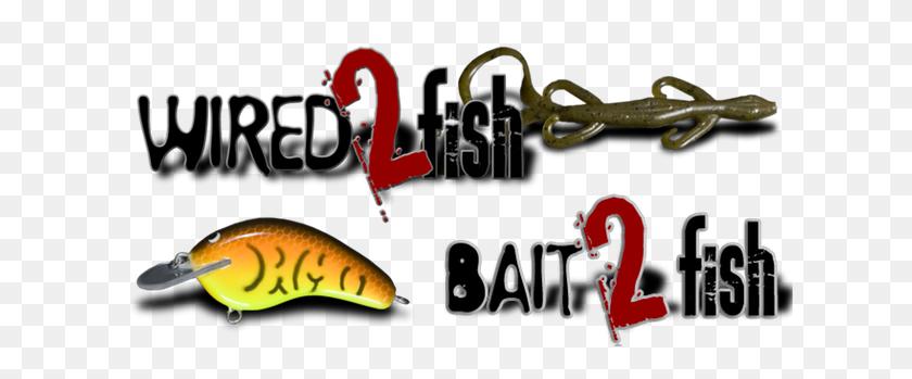 Bass Fishing Lure Selector Chart - Fishing Lure Clipart