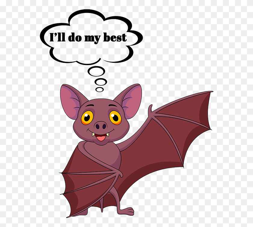 Bat Facts Experts Of Maine Midcoast Wildlife Specialists - Vampire Bat Clipart