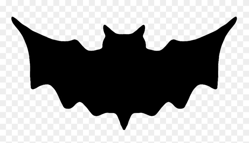 Bat Writing Cliparts - Stellaluna Clipart