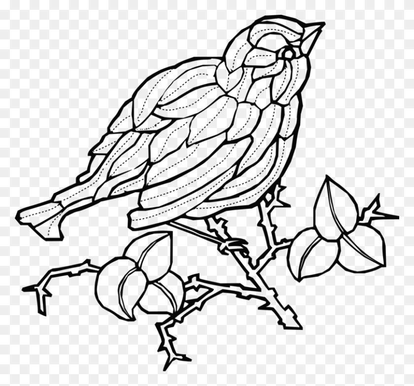 Beak Fauna Line Art Wildlife Branching - Wildlife Clipart