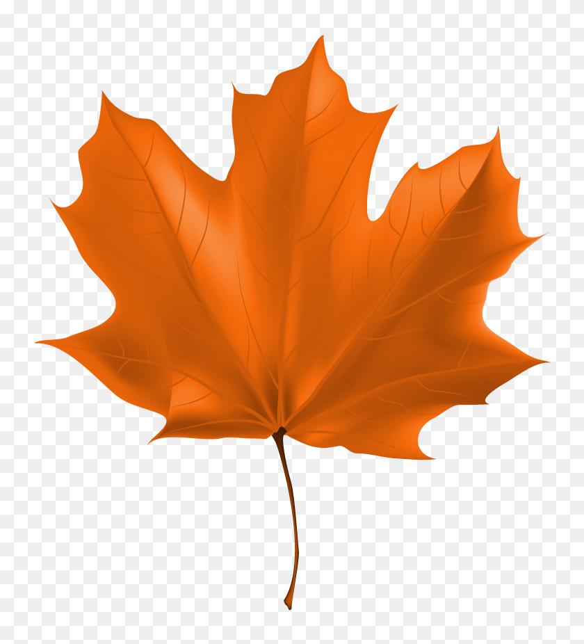 Beautiful Autumn Leaf Png Clipart Image Leaf Clipart - Tea Leaf Clip Art