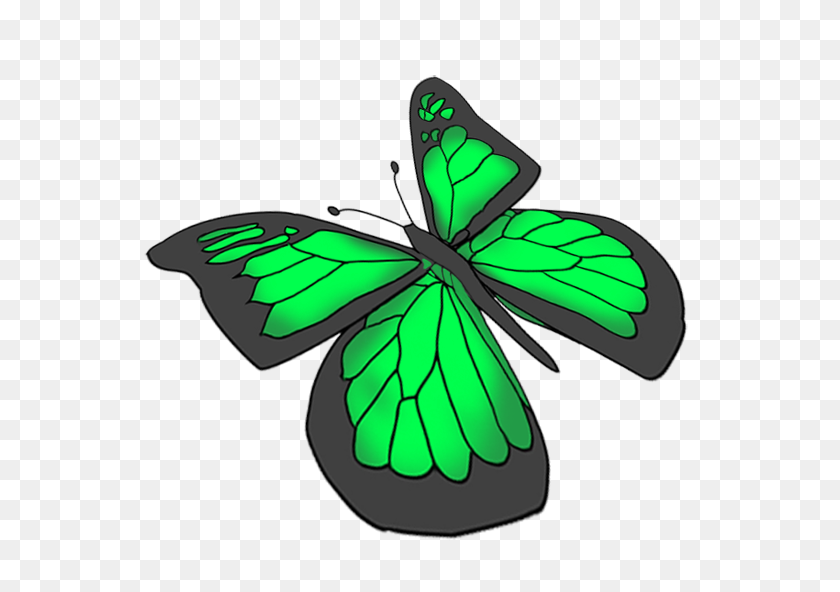 Beautiful Butterfly Images - Chrysalis Clipart