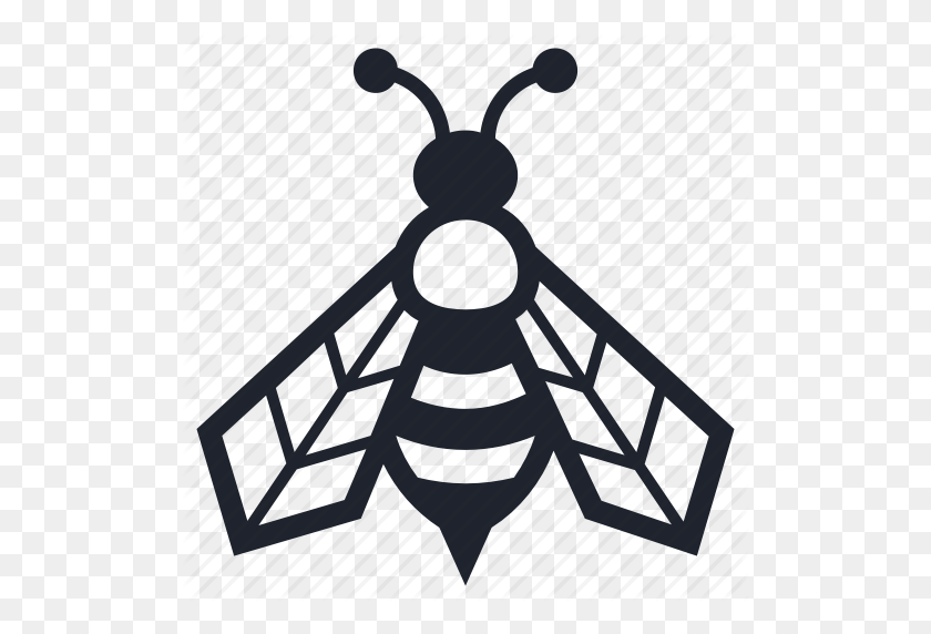 Bee, Beekeeper, Beekeeping, Farming, Insects, Mother, Queen Icon - Queen Bee PNG