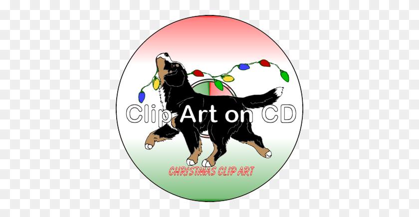Bernese Mountain Dog Shop - Old Dog Clipart