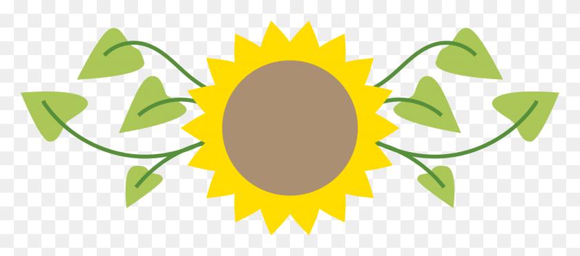 2400x960 Best Beautiful Sunflower Clipart - Pretty Border Clipart