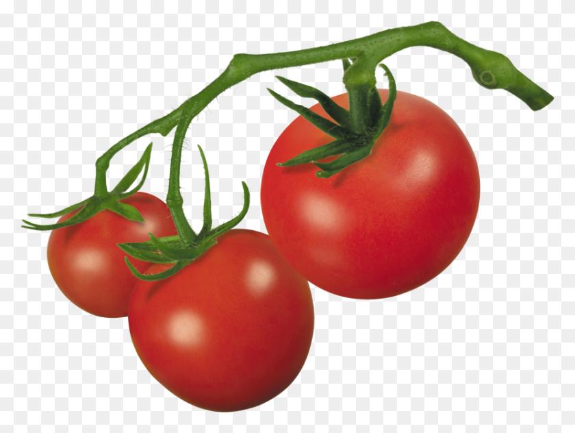 Best Tomato Clipart - Cherry Tomato Clipart