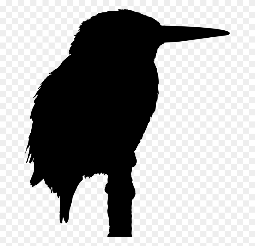 Kingfisher Bird Clipart Free Download Best Kingfisher Bird