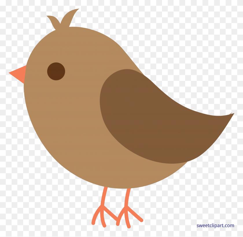 Bird Brown Cute Clip Art - Cute Bird Clipart
