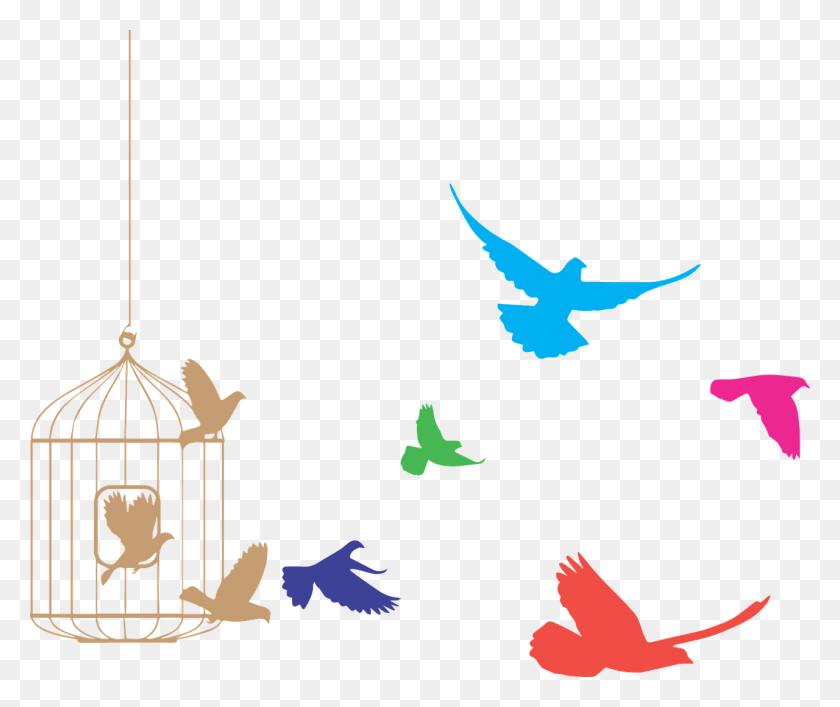Bird Cage Transparent Png - Bird Cage PNG