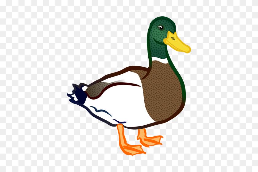 Bird Clip Art Outline - Dodo Bird Clipart