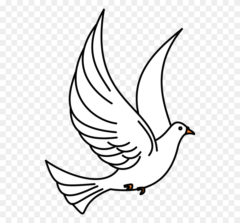 526x720 Bird Clipart Black And White Bird Black And White Birds Of Prey - Baby Bird Clipart Black And White