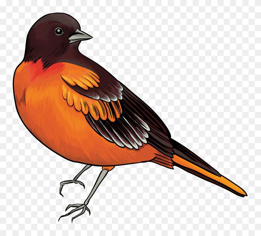 Bird Clipart Png Collection - Tweety Bird Clipart
