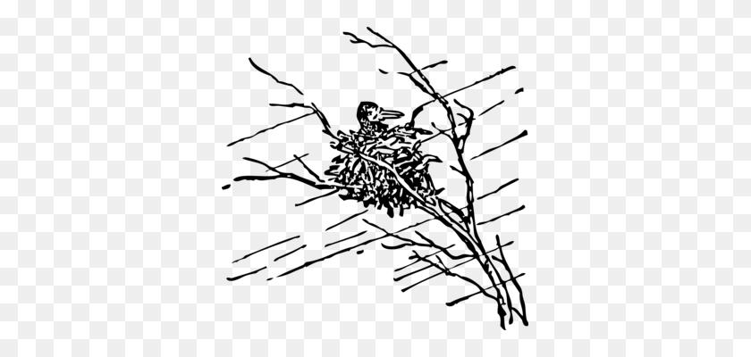 Bird Nest Silhouette Drawing Common Blackbird - Bird Nest Clipart Black And White