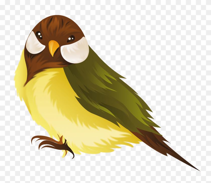 Bird Png Clipart - Cartoon Bird PNG