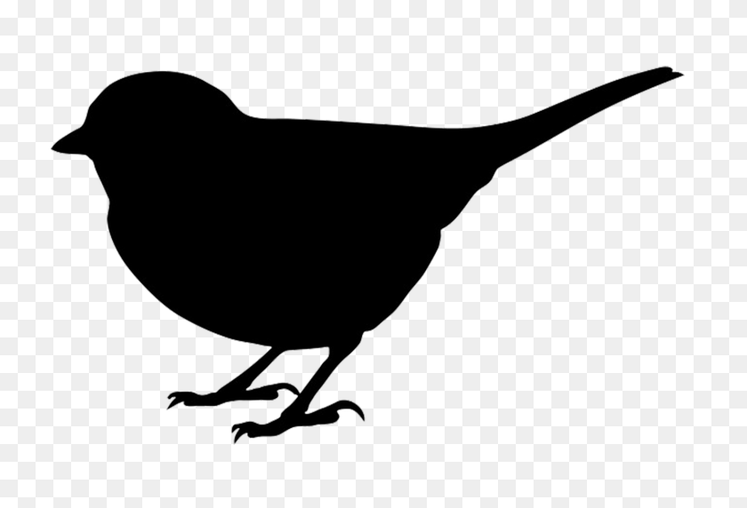 Bird Silhouette Clip Art Look At Bird Silhouette Clip Art Clip - Queen Clipart Black And White