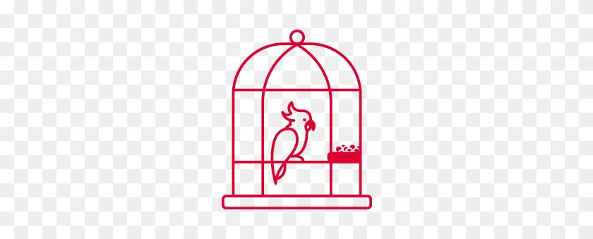 Birdie's Choice - Bird Cage PNG