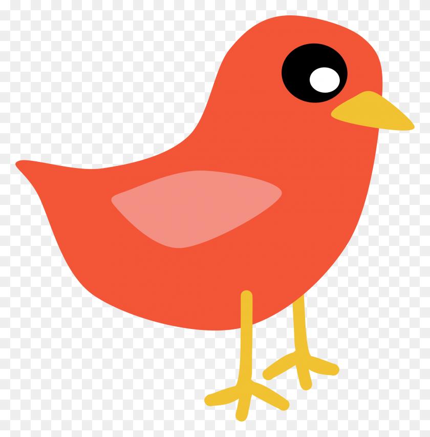 Birds Flying Free Download Clip Art Free Clip Art - Tropical Bird Clipart