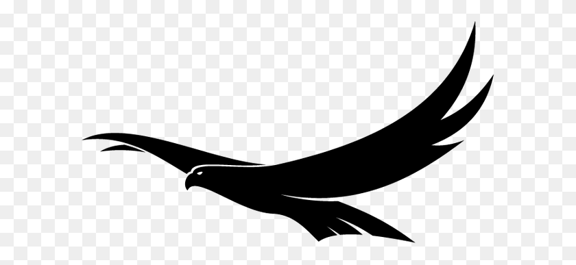 Birds Flying Over Landfill - Birds Flying PNG