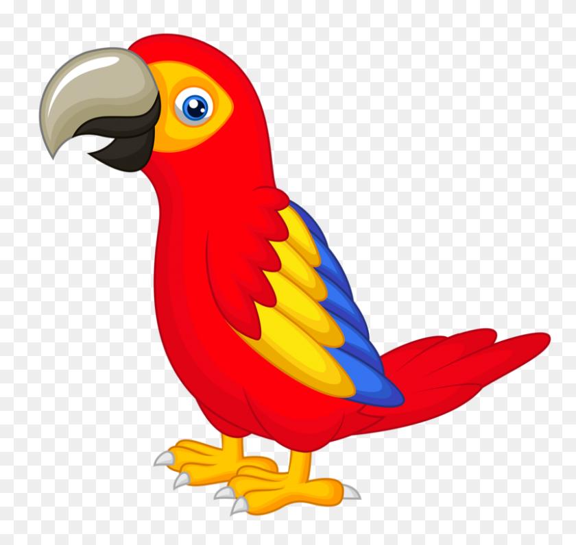 Birds Parrot, Clip Art And Birds - Tropical Bird Clipart