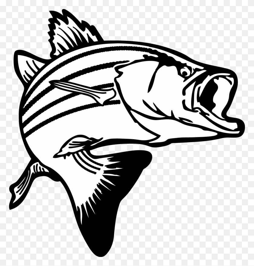 Black And White Fish Images Desktop Backgrounds - Hope Clipart Black And White