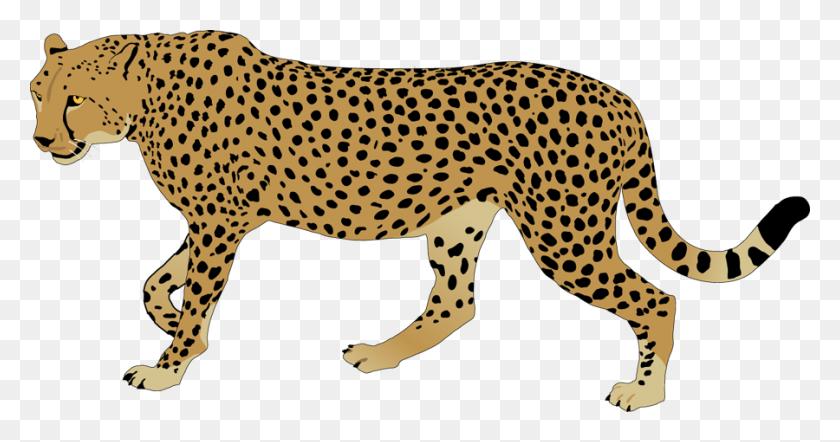 Black And White Running Cheetah Clipart Creative Business Cup - Cheetah Black And White Clipart