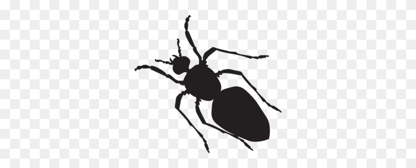 Black Ant Silhouette Png, Clip Art For Web - Ant Clipart PNG