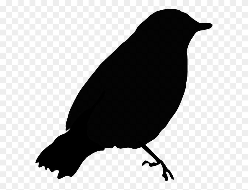 Black Bird Silhouette Clip Art - Birds Silhouette PNG