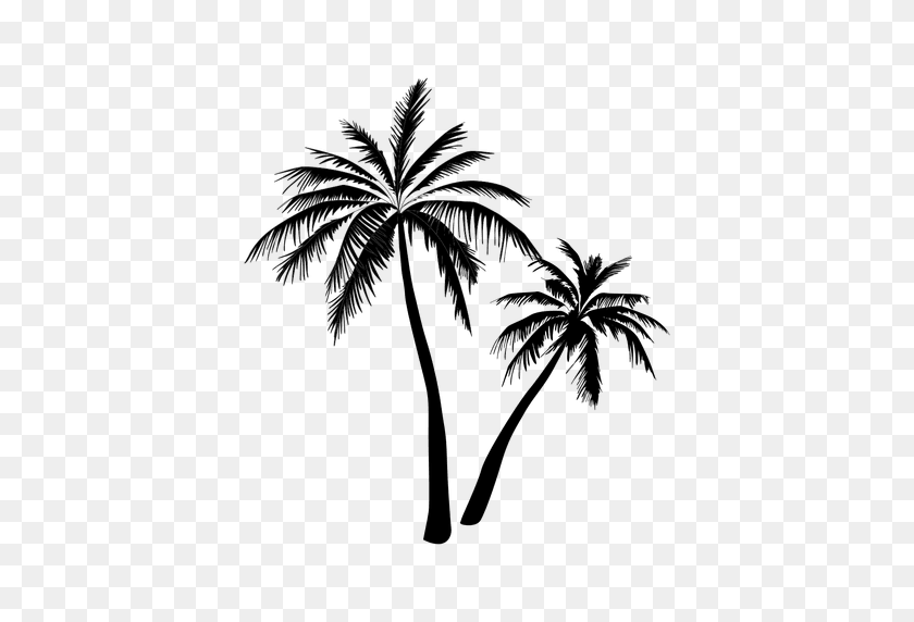 Black Palm Tree Silhouette - Palm Tree Leaves PNG