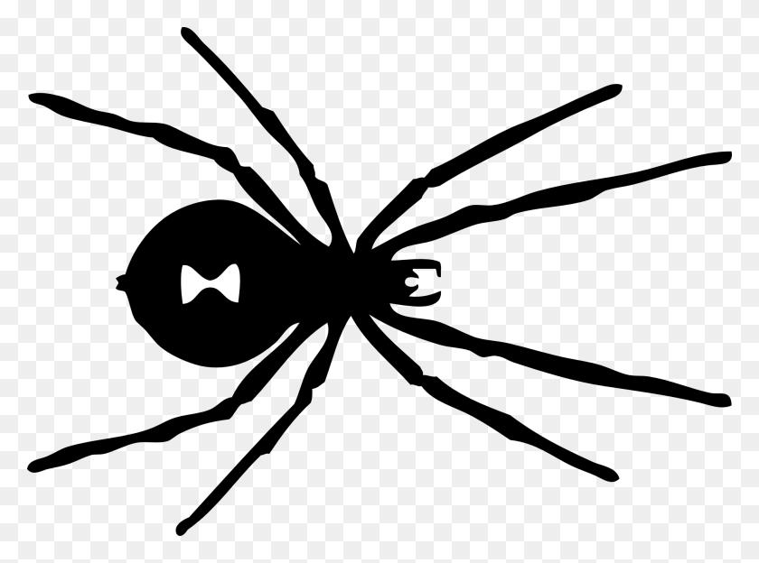 Black Widow Logo Marvel Got Geek Spider, Black - Pumpkin Clipart Free Black And White