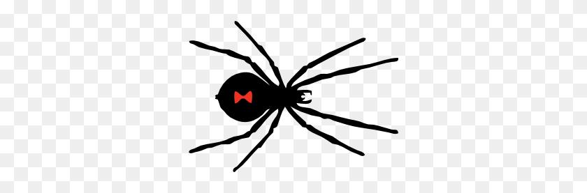 Black Widow Spider Clip Art Diy Crafts Spider - Pumpkin Clipart Free Black And White