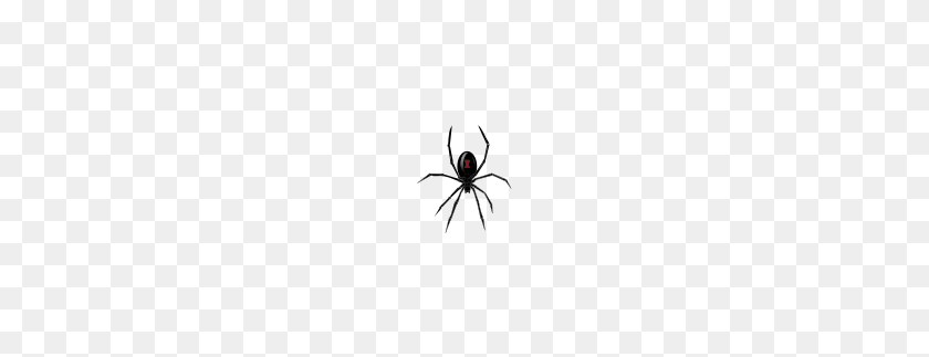 Black Widow Spider Png Clip Arts For Web Spider Clipart Black And White Stunning Free Transparent Png Clipart Images Free Download