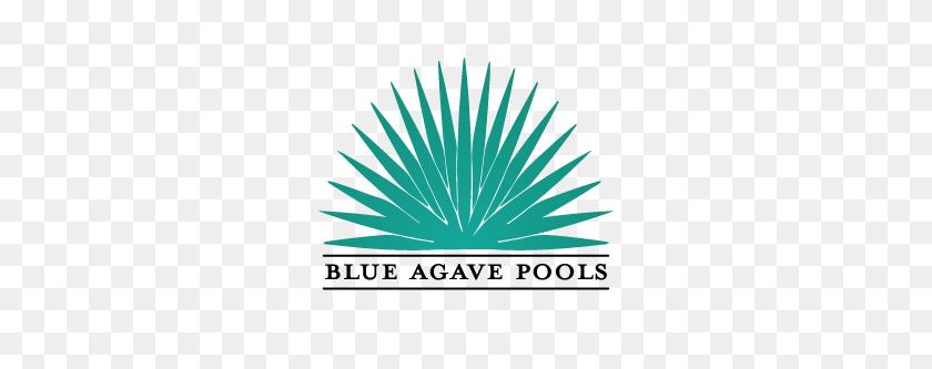 Blue Agave Pools Blue Agave Pools - Agave PNG