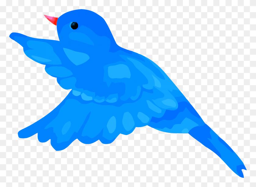 Blue Bird Clipart Mage Png - Blue Bird Clipart