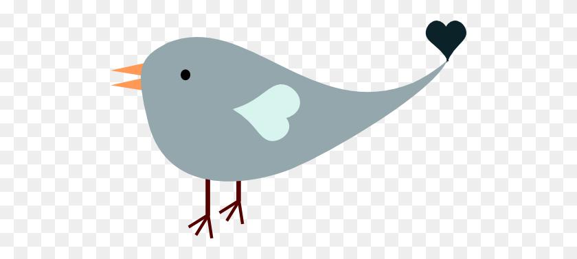 518x318 Blue Male Love Bird Free Images - Lovebird Clipart