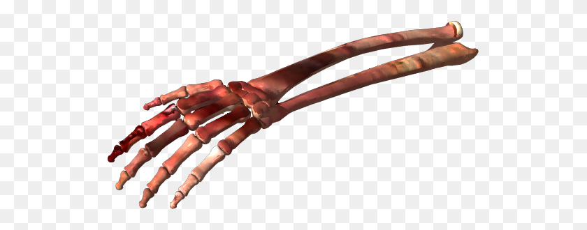 Bones Png Picture - Bones PNG