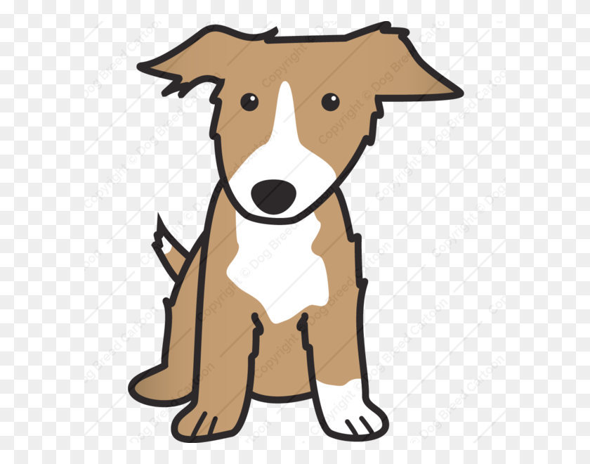 Border Collie Dog Cartoons Online Download Cartoon Dogs Border - Cartoon Dog PNG