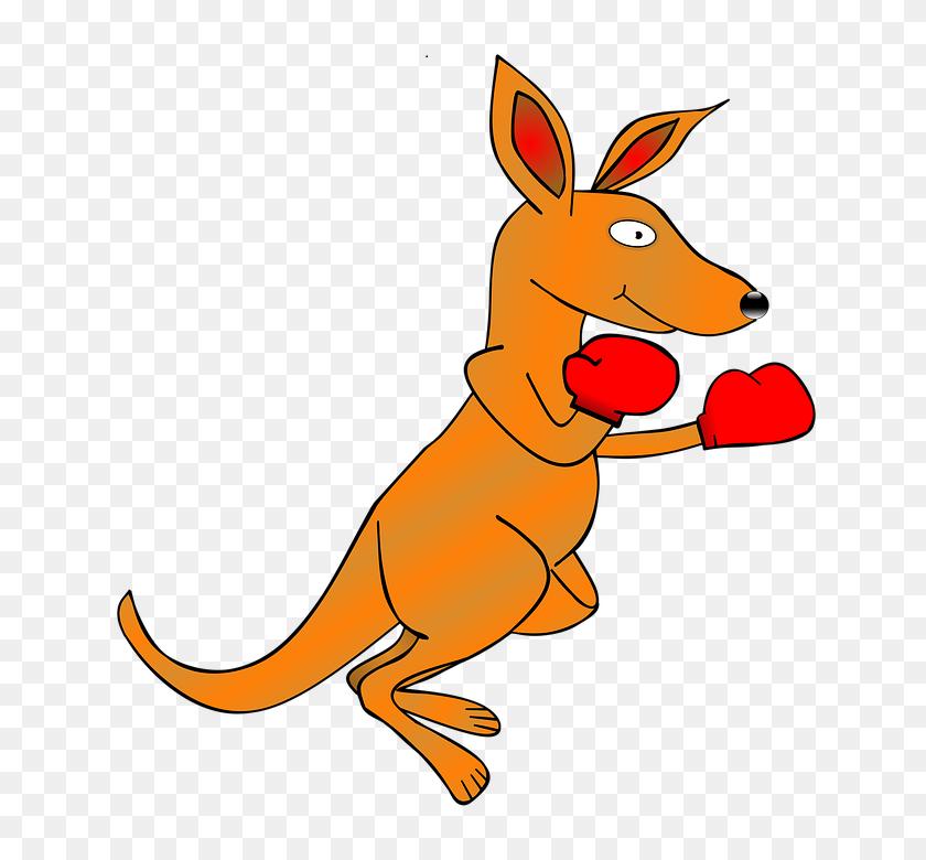 Boxing Gloves Free Illustration Kangaroo Clip Art Ing Gloves Image - Boxing Gloves Clipart Black And White