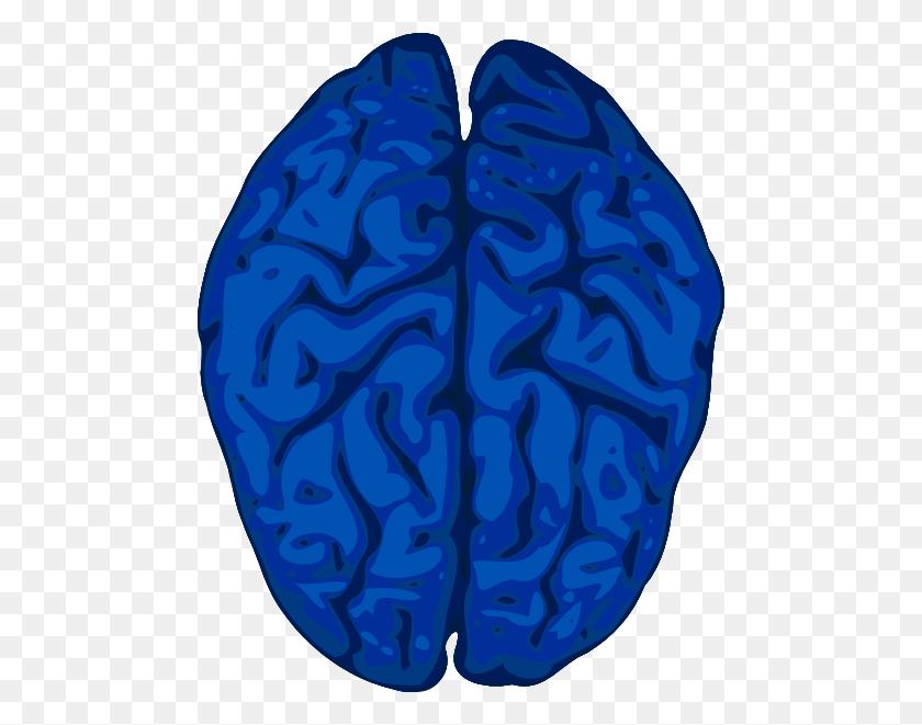 Brain Clipart Math Brain - Thinking Brain Clipart For Kids