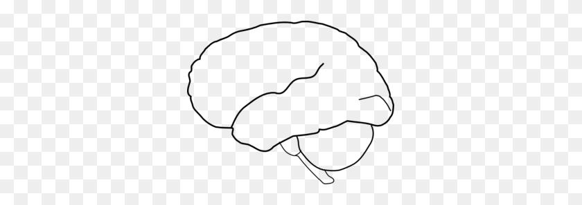 Brain Outline Clip Art, Free Download Clipart - Brain Clipart Transparent