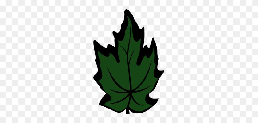 Branch Leaf Computer Icons Plant Stem Petal - Stem Clipart