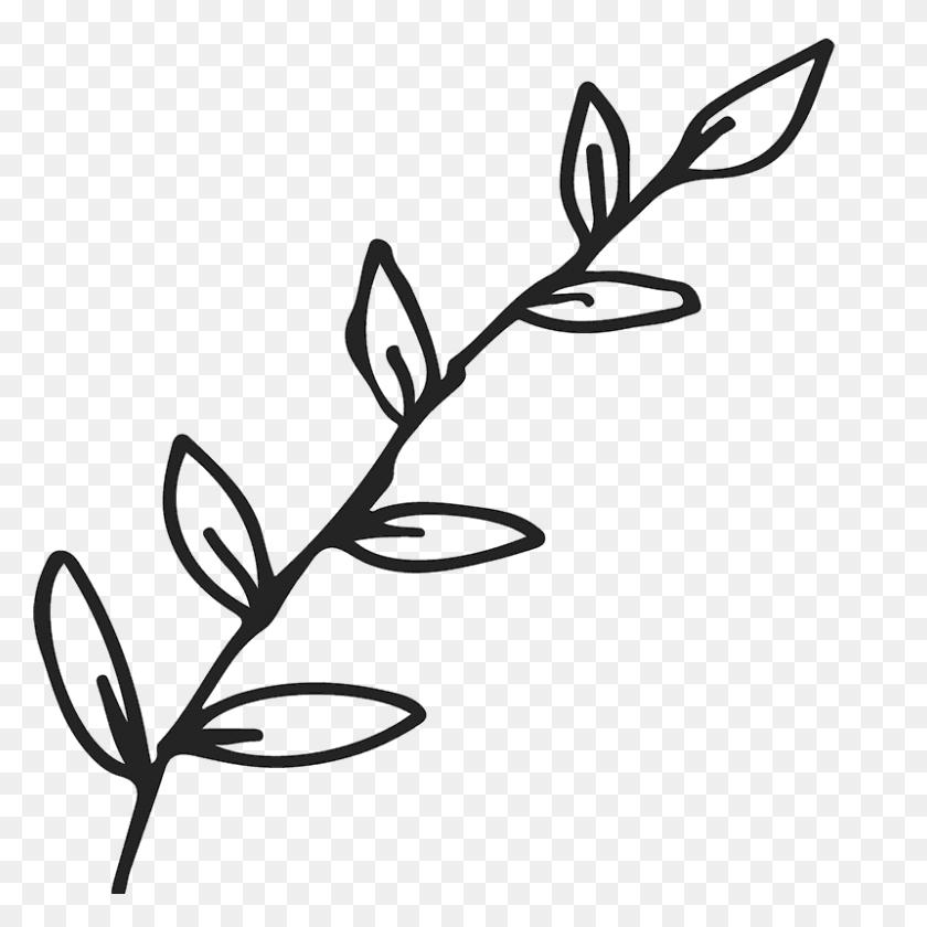 Branch With Leaves Outline Rubber Stamp Flower Leaf Stamps - Leaf Outline PNG