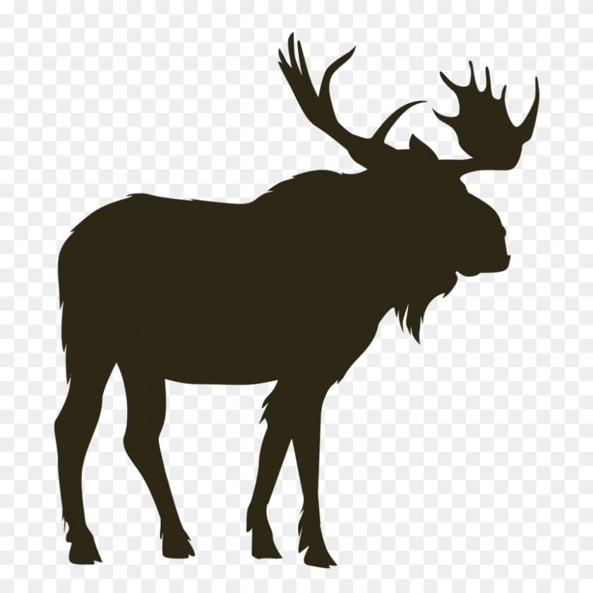 British Columbia Mountain Goat Hunting Photos - Mountain Goat Clipart